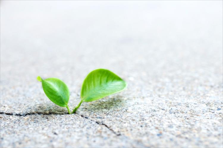AGA治療の副作用や治療効果を見極めて、安全に薄毛改善するために