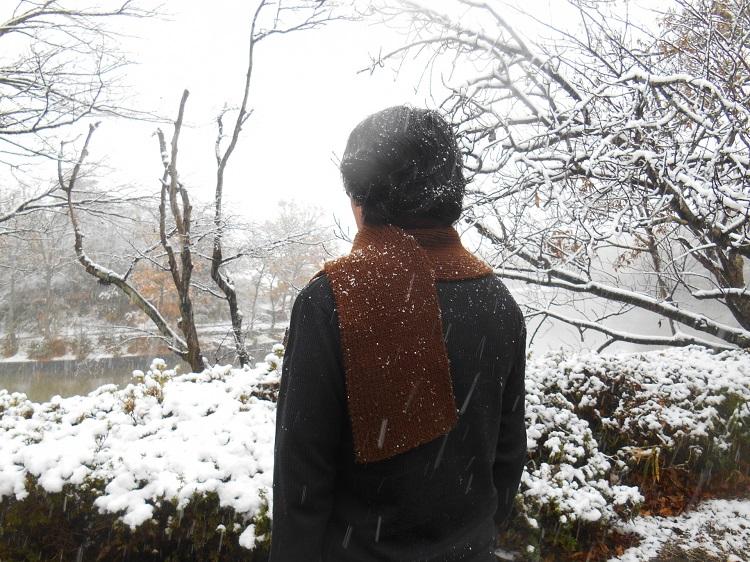 冬は抜け毛の季節? 注意したい冬の抜け毛対策